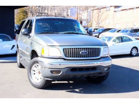 Spruce Green Metallic 1999 Ford Expedition XLT 4x4