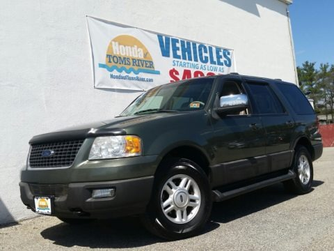 Estate Green Metallic 2004 Ford Expedition XLT 4x4