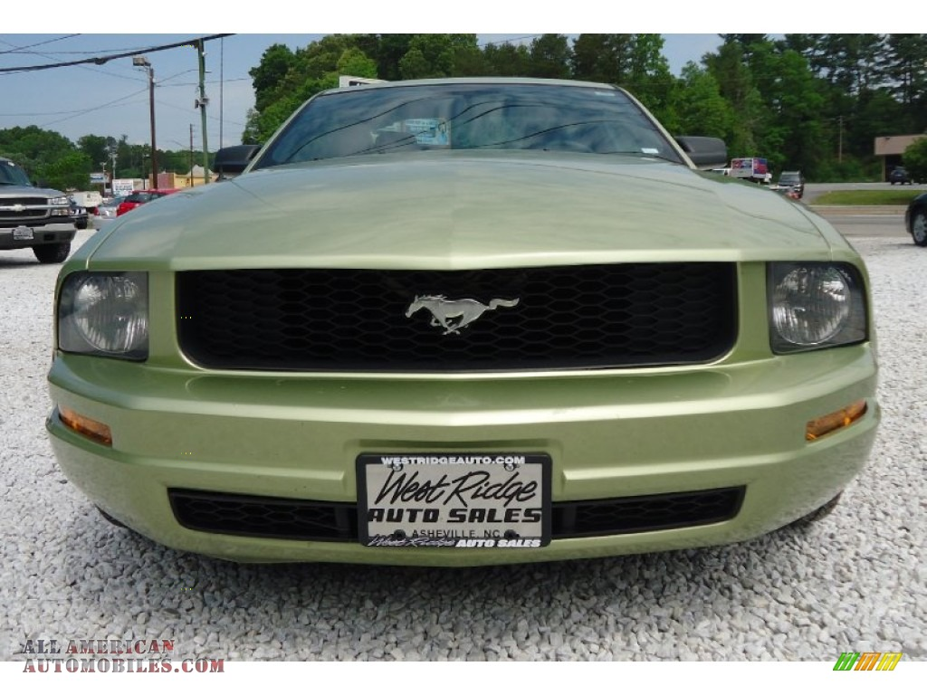 2005 ford mustang v6 deluxe coupe in legend lime metallic photo 13 192276 all american. Black Bedroom Furniture Sets. Home Design Ideas
