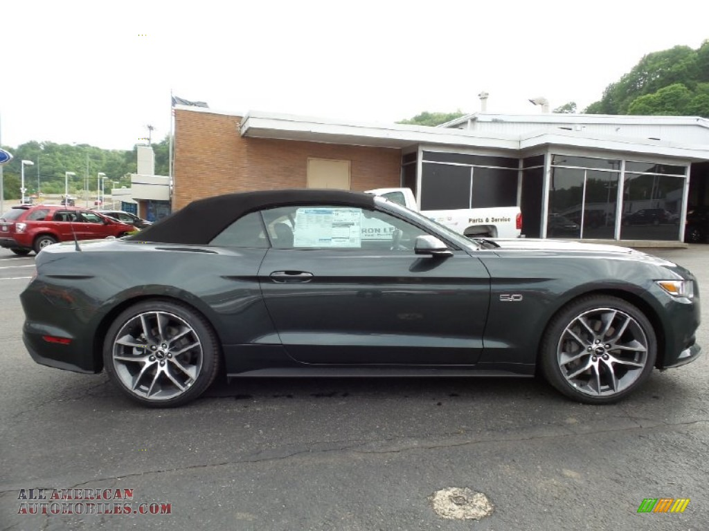 Ford Magnetic Metallic Paint Mustang
