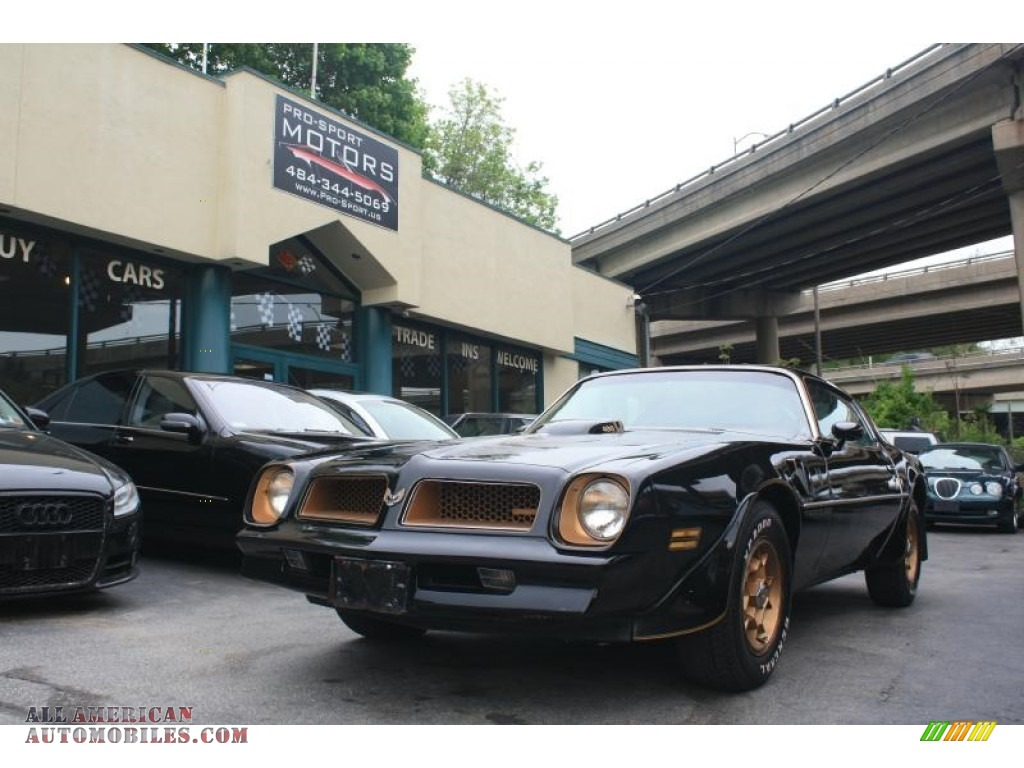 1976 Firebird Trans Am - Starlite Black / Buckskin photo #1