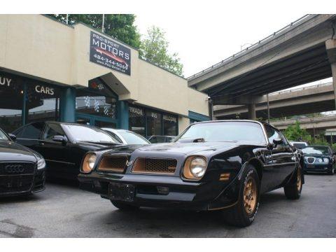 Starlite Black 1976 Pontiac Firebird Trans Am