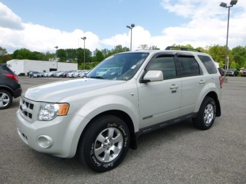 Light Sage Metallic 2008 Ford Escape Limited 4WD