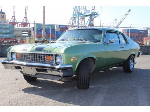 Light Green Metallic 1973 Chevrolet Nova Coupe