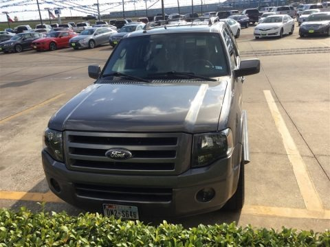 Sterling Grey Metallic 2010 Ford Expedition Limited