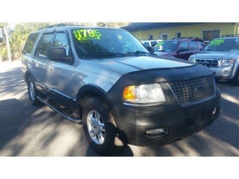 Silver Birch Metallic 2005 Ford Expedition XLT
