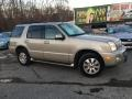 Mercury Mountaineer AWD Light French Silk Metallic photo #2