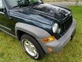 Jeep Liberty CRD Sport 4x4 Deep Beryl Green Pearl photo #17