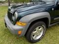 Jeep Liberty CRD Sport 4x4 Deep Beryl Green Pearl photo #36