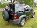 Jeep Liberty CRD Sport 4x4 Deep Beryl Green Pearl photo #38