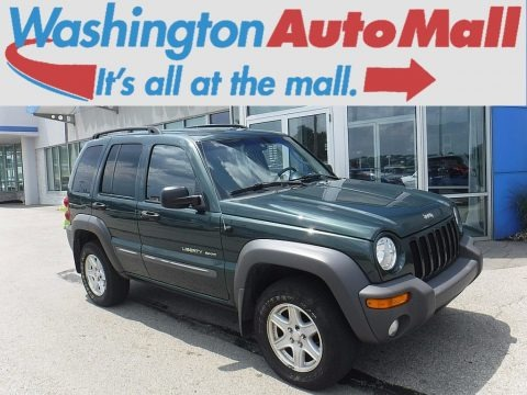 Shale Green Metallic 2002 Jeep Liberty Sport 4x4