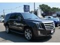 Cadillac Escalade Luxury 4WD Gray Silk Metallic photo #1