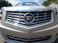 Cadillac SRX Luxury AWD Silver Coast Metallic photo #9