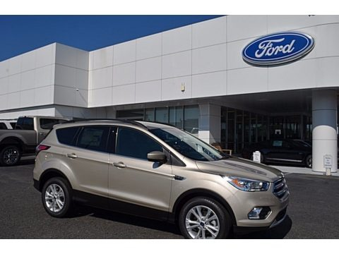 White Gold 2017 Ford Escape SE