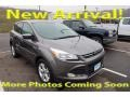 Ford Escape SE 1.6L EcoBoost 4WD Sterling Gray photo #1
