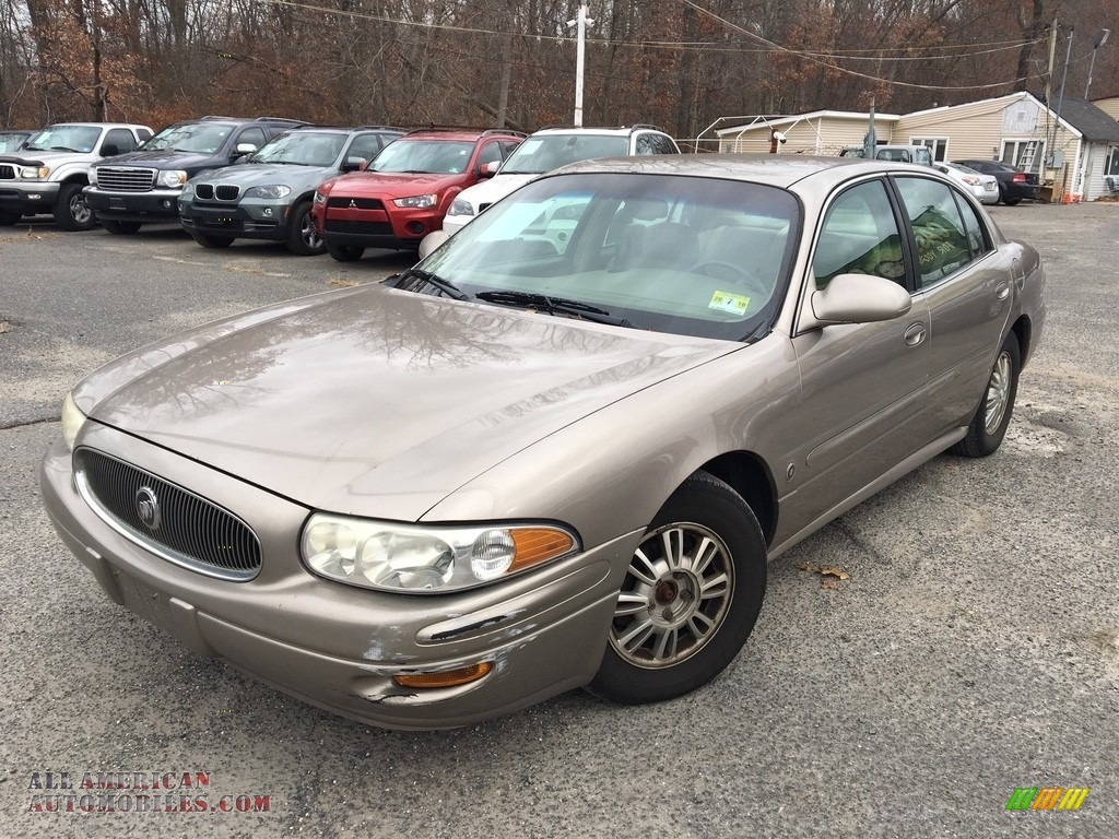 2004 LeSabre Custom - Light Bronzemist Metallic / Light Cashmere photo #1