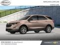 Chevrolet Equinox LS AWD Sandy Ridge Metallic photo #2