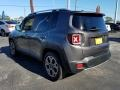 Jeep Renegade Limited Granite Crystal Metallic photo #3