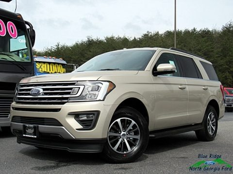 White Gold 2018 Ford Expedition XLT