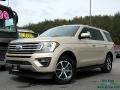 Ford Expedition XLT White Gold photo #1