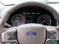 Ford Expedition XLT White Gold photo #16