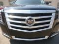 Cadillac Escalade Luxury 4WD Black Raven photo #9