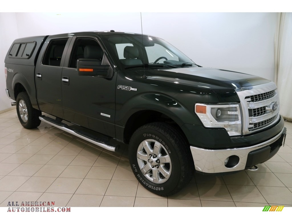 2014 F150 XLT SuperCrew 4x4 - Green Gem / Steel Grey photo #1