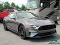 Ford Mustang EcoBoost Fastback Magnetic photo #7