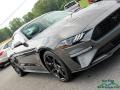Ford Mustang EcoBoost Fastback Magnetic photo #27