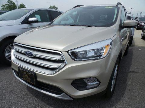 White Gold 2018 Ford Escape SE