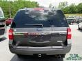 Ford Expedition XLT 4x4 Magnetic photo #4