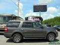 Ford Expedition XLT 4x4 Magnetic photo #5