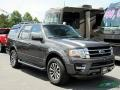 Ford Expedition XLT 4x4 Magnetic photo #6