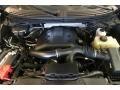 Ford F150 XLT SuperCrew 4x4 Green Gem Metallic photo #17