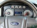 Ford F150 XLT SuperCab 4x4 Ingot Silver Metallic photo #14