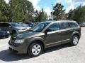 Dodge Journey SE Olive Green photo #1