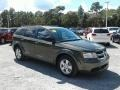 Dodge Journey SE Olive Green photo #7