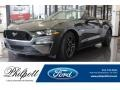 Ford Mustang GT Premium Convertible Magnetic photo #1