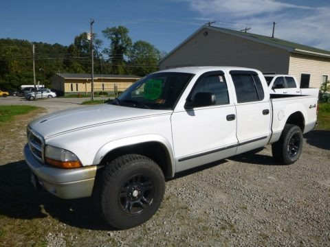 Bright White 2004 Dodge Dakota SLT Quad Cab 4x4