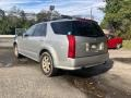 Cadillac SRX V6 Light Platinum photo #4
