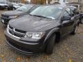 Dodge Journey SE Bruiser Grey photo #8