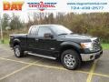 Ford F150 XLT SuperCab 4x4 Green Gem Metallic photo #1