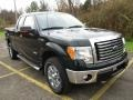 Ford F150 XLT SuperCab 4x4 Green Gem Metallic photo #18