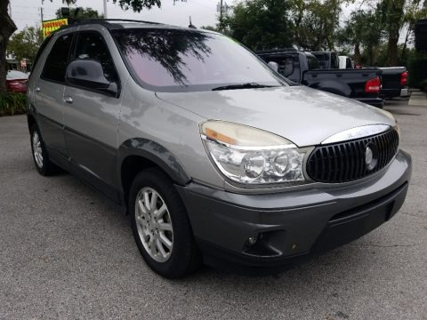 Platinum Metallic 2005 Buick Rendezvous CX