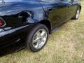 Pontiac Grand Am SE Sedan Black photo #77