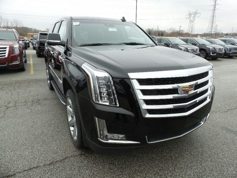 Black Raven 2019 Cadillac Escalade Luxury 4WD