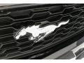 Ford Mustang V6 Convertible Shadow Black photo #30