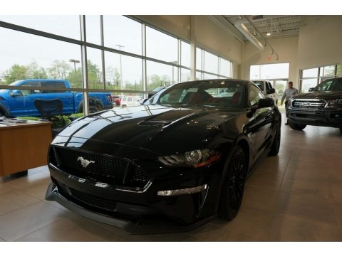 Shadow Black 2019 Ford Mustang GT Premium Fastback