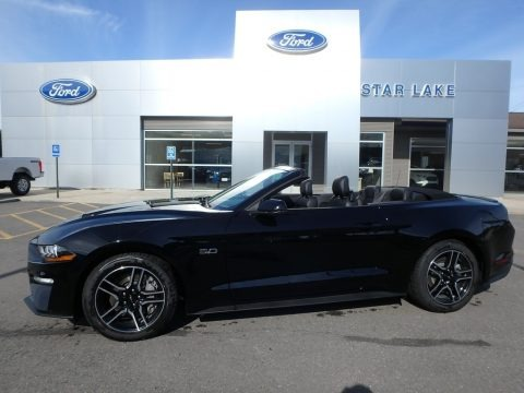 Shadow Black 2019 Ford Mustang GT Premium Convertible