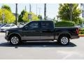 Ford F150 XLT SuperCrew Green Gem Metallic photo #4